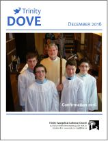 dove-cover